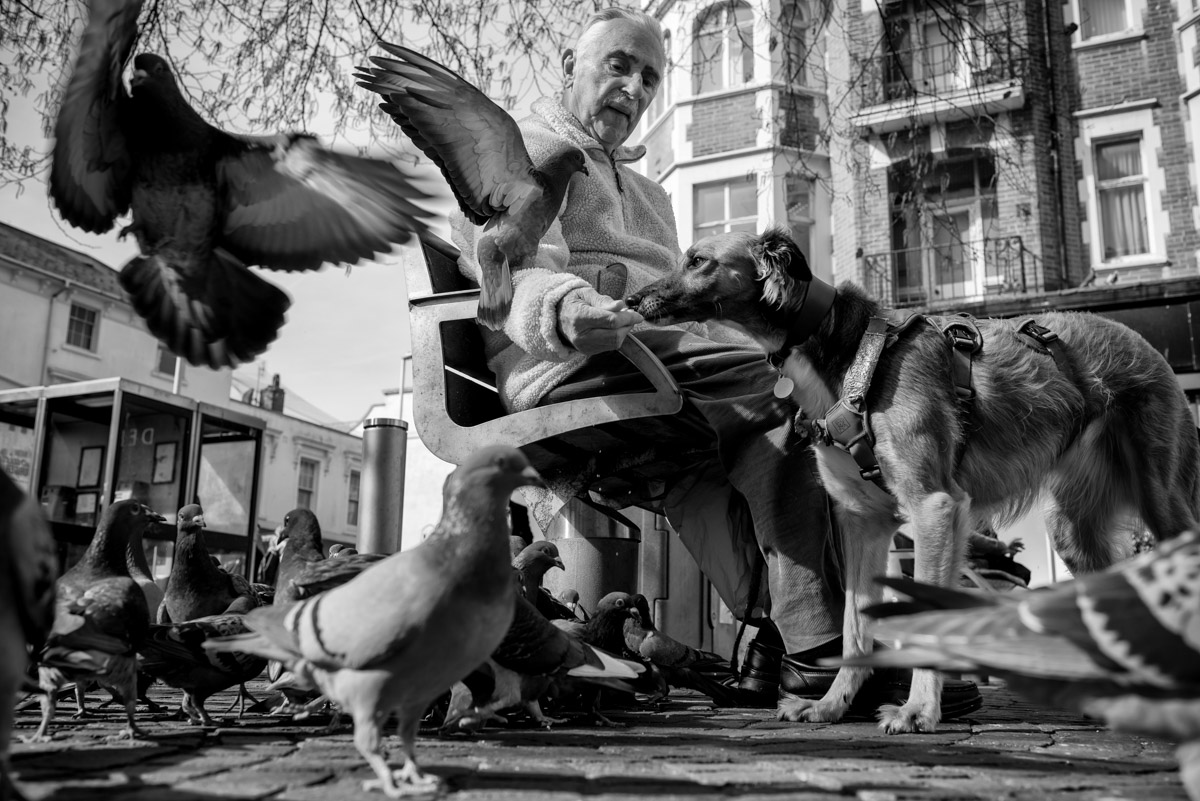 Black and white photograph of 90 year old Dennis and his dog Minnie feeding the pigeons in Folkestone Kent