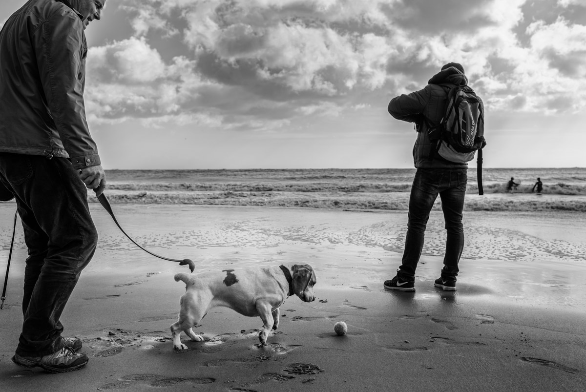Man and his dog photographed on Folkestone beach in Kent